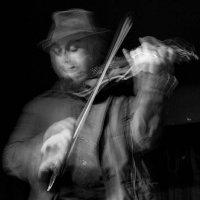 Павел Голенко - скрипка (Джаз -бенд Ёлки - Палки, Израиль) :: Георгий Столяров