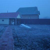 утренний туман :: Max Zay