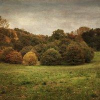 Челобака в пейзаже 2 :: Андрей Бойко