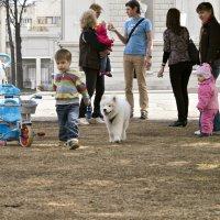 Мальчик, давай поиграем? :: Сергей Исаенко