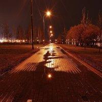 Ночь, улица, фонарь. :: Наталья Красникова