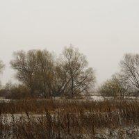 А вчера был дождь. :: Анастасия Сергеевна