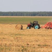 Трактор :: Дмитрий Дмитрий