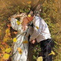 Осенняя свадьба :: Ева Олерских