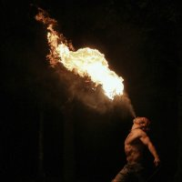 fire show :: Veronika D