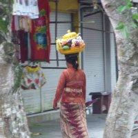 Bali :: Александр Невский