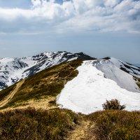 Весна в горах 1 :: Владимир Дмитрищак