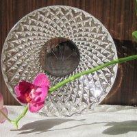 Натюрморт с орхидеей :: Маера Урусова