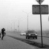 Прогулка в тумане :: Елена Перевозникова