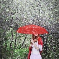 Вишневый сад :: Мария Молчанова
