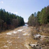 Река пошла. :: олег воробьев
