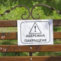 юмор :: АНДРЕЙ федорцов