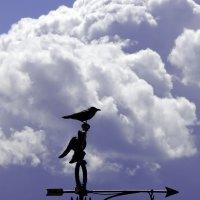 под облаками :: Андрей Маслов