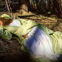 сон под ласковым солнышком... :: Ирэна Мазакина