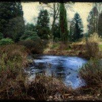 В старом парке :: Андрей Бойко