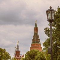 Открыточка ) :: Наталья Аракчеева