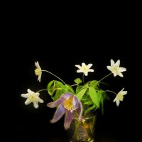 Весна :: Артур Овсепян