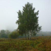 Утро туманное , утро седое ... :: Лана Латий