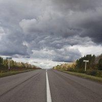 Самая лучшая дорога в мире - дорога домой... :: Валерий Рыкунов