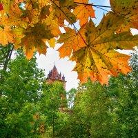 Осень :: SvetlanaLan .