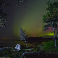 На берегу Белого моря. :: Александр Бобрецов