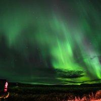 Ночные краски сентября. :: Юрий Харченко