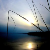Чёрмозский пруд :: Юлия Карагулова