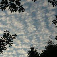 Кучевые облака. :: Александр Атаулин