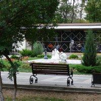 Шахматный клуб в парке... :: Тамара (st.tamara)
