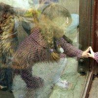 Маша и медведь :: Сергей Рубан