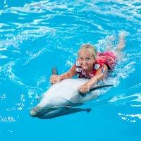 купание с дельфином :: Кристина Волкова(Загальцева)