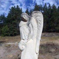 Ангел в лесу :: Викторина Срыбна