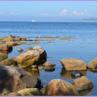 Белое море :: Татьяна