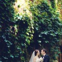 Свадебная фотосъемка в Самаре :: марина алексеева