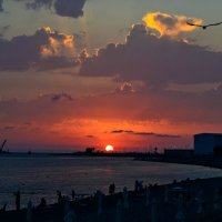 Закат над Олимпийским парком. :: cfysx