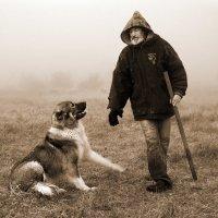 Пастух и собака Джуна :: Владимир Дядьков