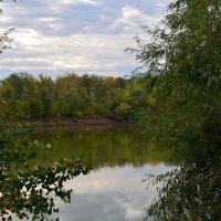 Сдержанные краски осени :: Александр Облещенко