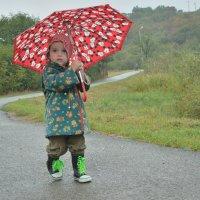 дождь идет :: Мария Климова
