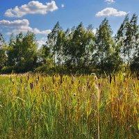 На  месте  озера... :: Валера39 Василевский.
