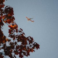 Осенние краски :: Olga Buchinskaya