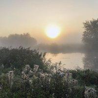 Утро бабьего лета :: Сергей Михайлович