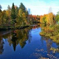 осень :: Елена Третьякова
