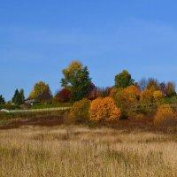 Осенний вид Красной Горы :: Николай Туркин