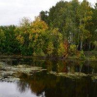 на озере :: Savayr