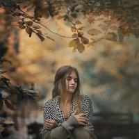 Осень ... :: Надежда Шибина