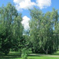 В парке :: раиса Орловская