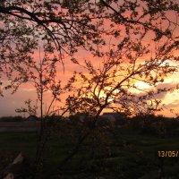разноцветный закат... :: Ирина Шиловская