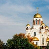 Храм-на-Крови :: Юлия Москвина