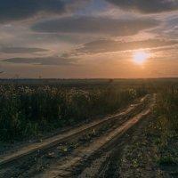 Дорога к солнцу :: Анатолий Катков