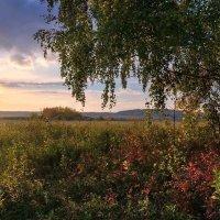 Осенняя :: Анатолий Катков